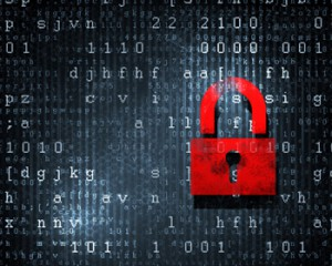 Blue Mountain Data Systems IT Security Support